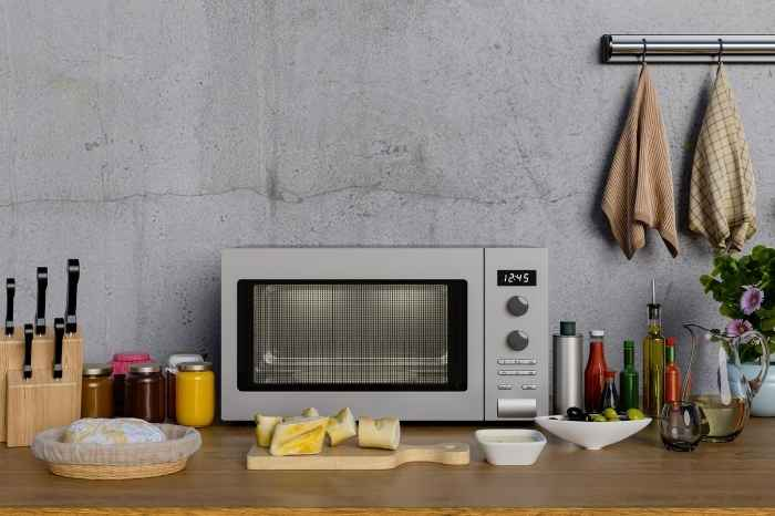 best-buy-convection-microwave-india