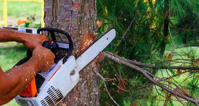 Best-Chainsaw-Machines-India